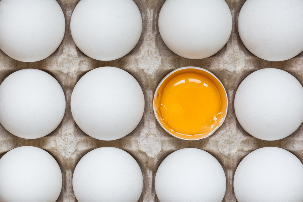 7 Reasons Why Eggs are Good for You