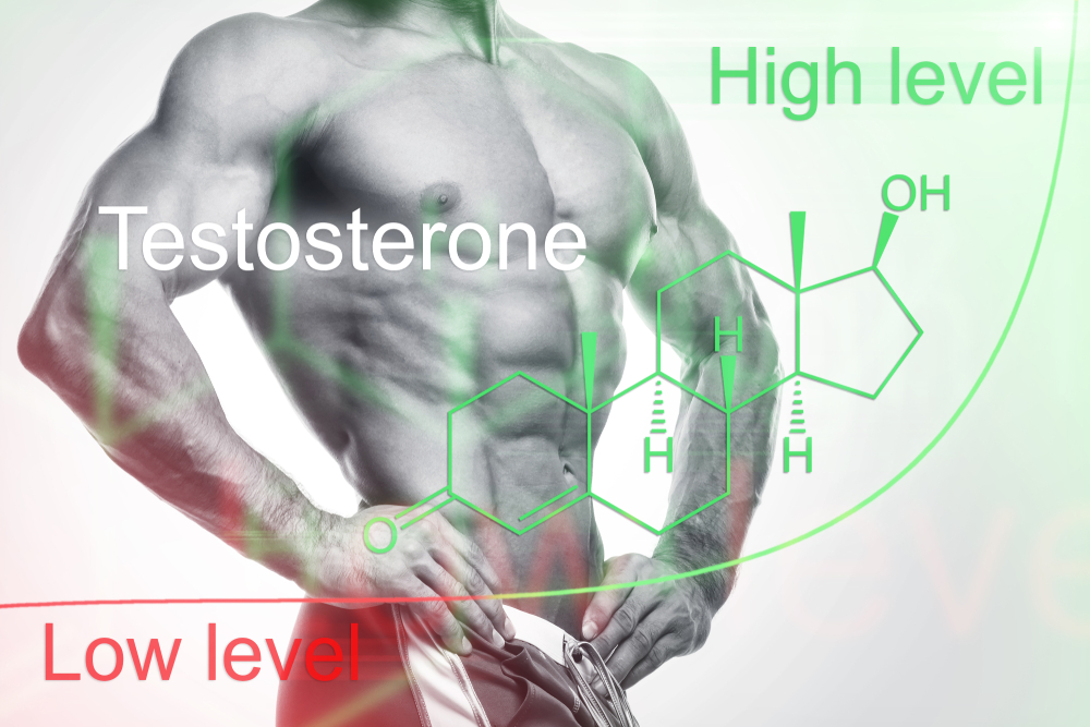 What Happens If Your Testosterone Levels Are Too High?