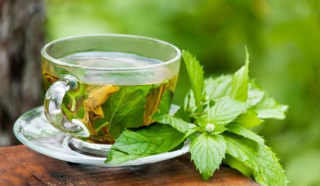 Is Green Tea Going to Help You Lose Weight?