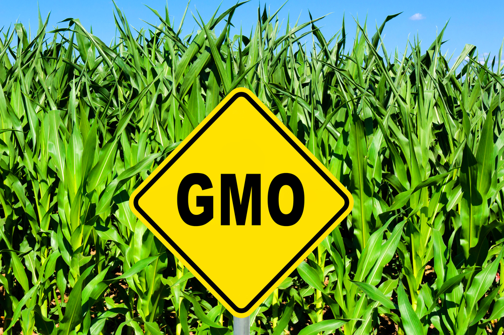 Why GMOs Are Actually Good for Your Health