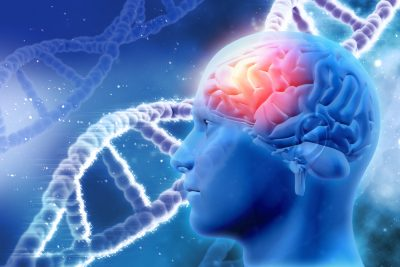 human brain and DNA strand in background